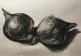 Red Onions by Bridget Rust, Drawing, Charcoal on Paper