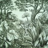 The Gardener by Bridget Rust, Artist Print, Etching