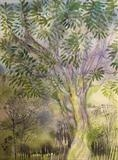 Tree in Spring by Bridget Rust, Painting, Watercolour on Paper
